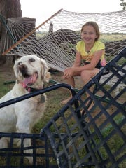Willow Grimmett, 10, sits with her agility dog, Emmy, at their home in Edmond, Okla. Willow spent the summer outdoors with the family's English Setter, designing and running obstacle courses.