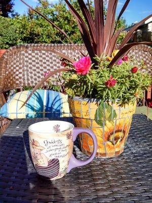 Morning in the garden.