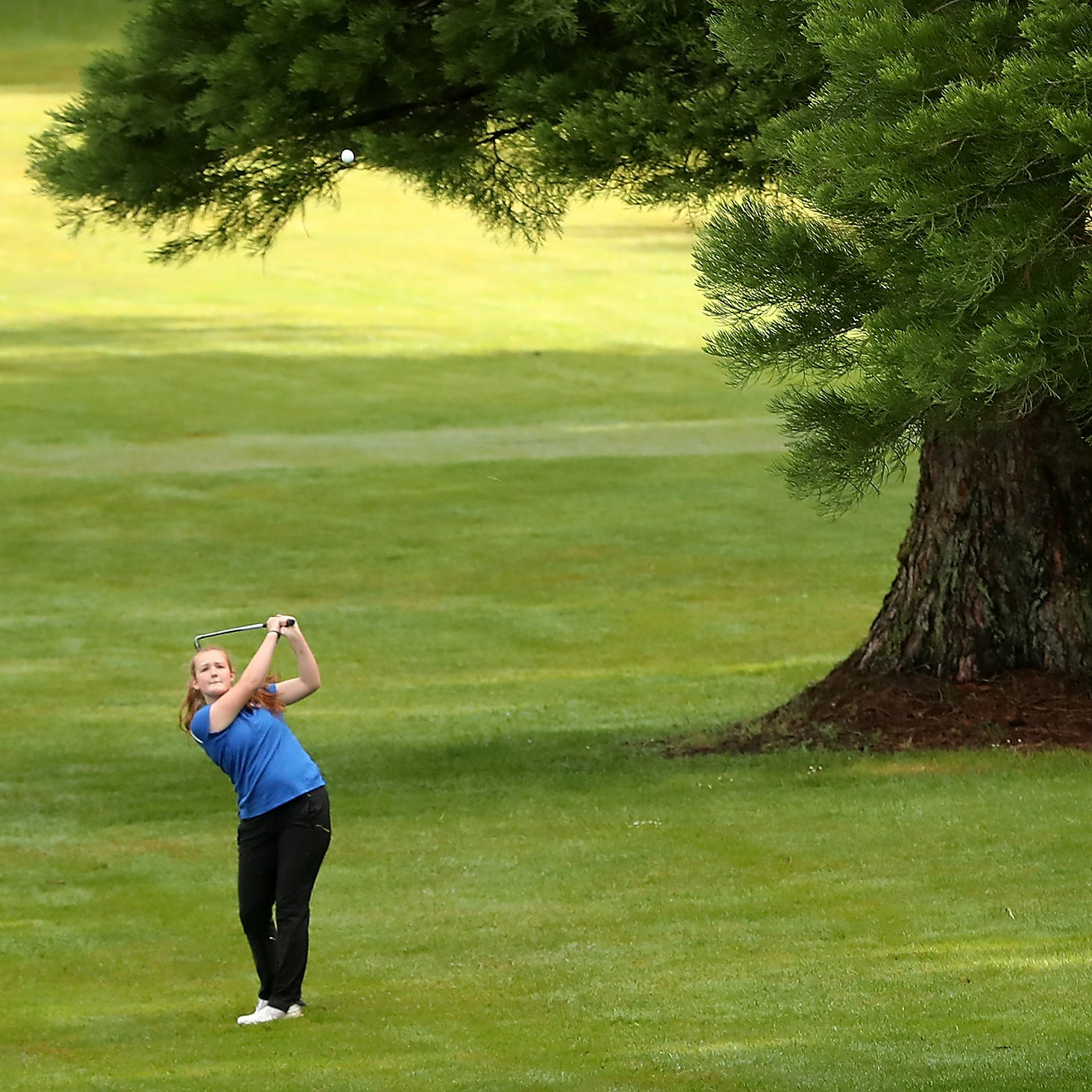 West Sound Report: Bremerton golfer Gelhaus wins state qualifier