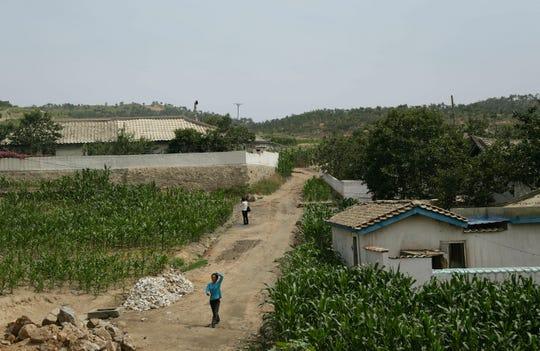 In this June 24, 2015, file photo, people walk between corn fields in South Hwanghae, North Korea.