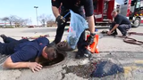 FDL Fire/Rescue personnel rescue seven ducklings from storm sewer in Pick n Save parking lot.