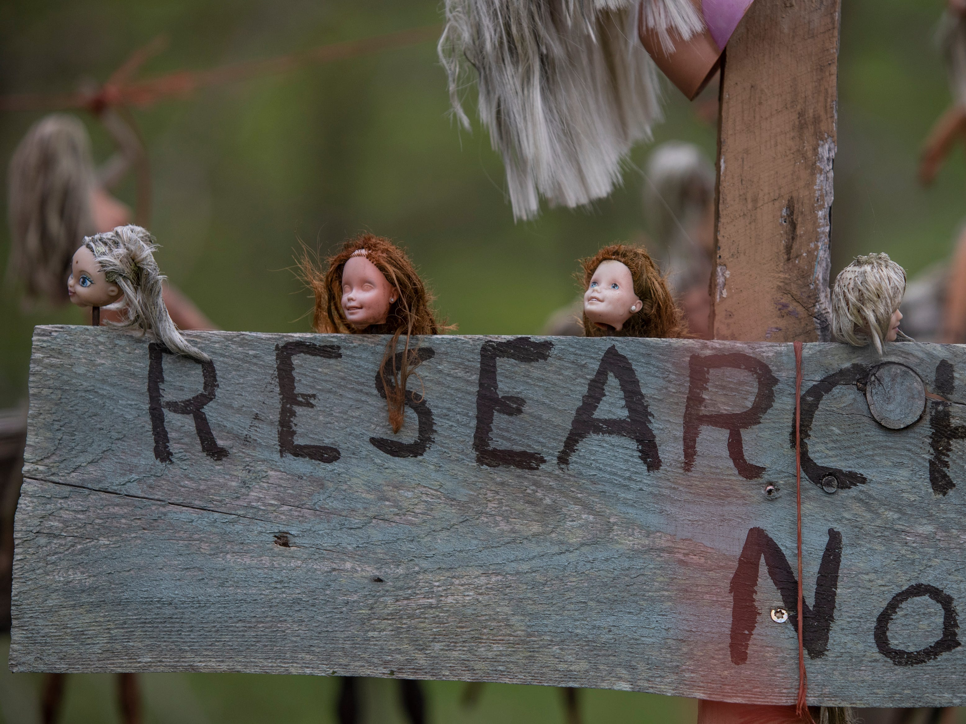 Barbie dolls hang from a sign in the research section of the Home for Wayward Babydolls. April 19, 2019.