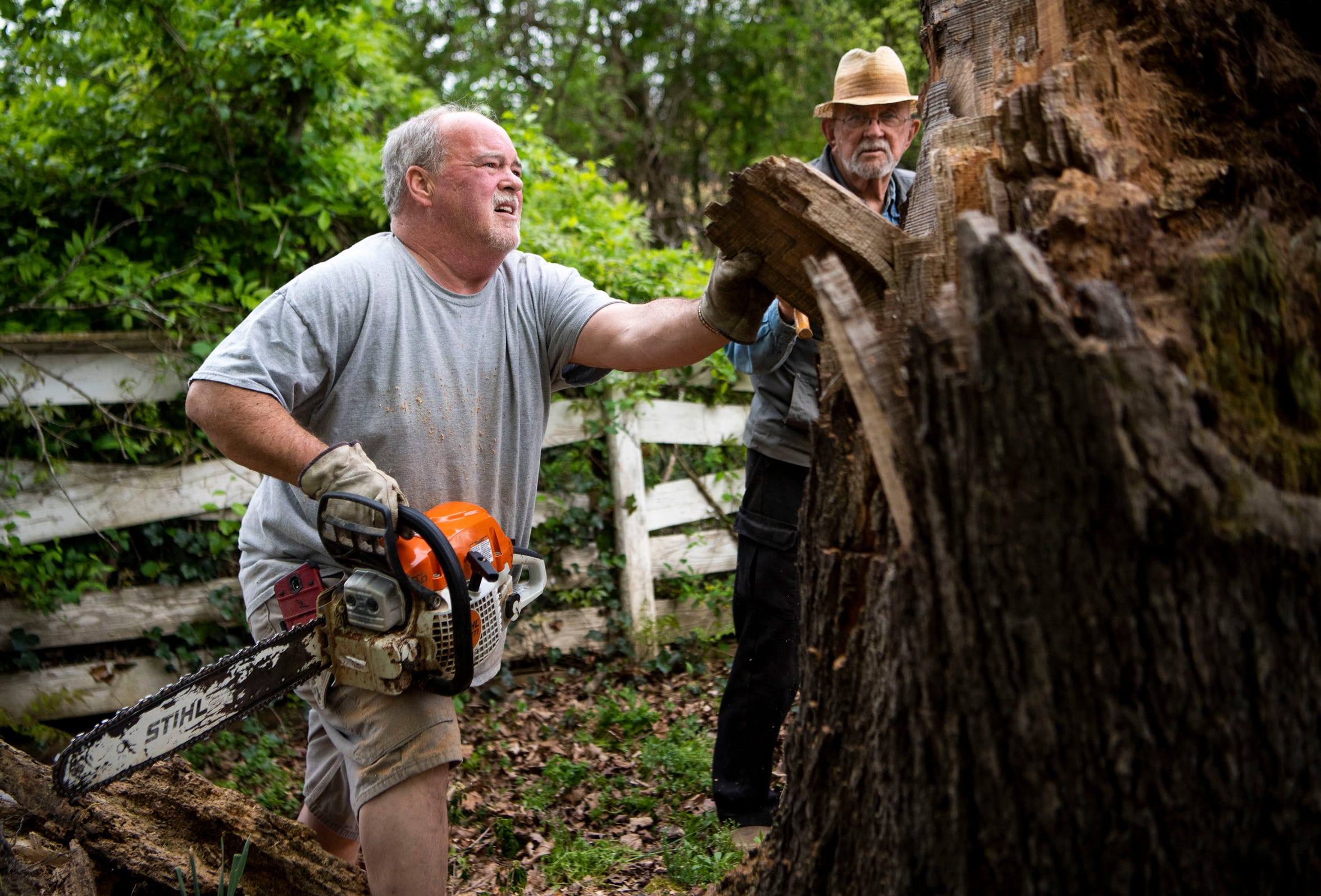 Larry Elmore, left, uses a chain saw to cut into a fallen tree stump on the Cookeville, Tenn., farm of Dr. Sam Barnes on April 17, 2019.