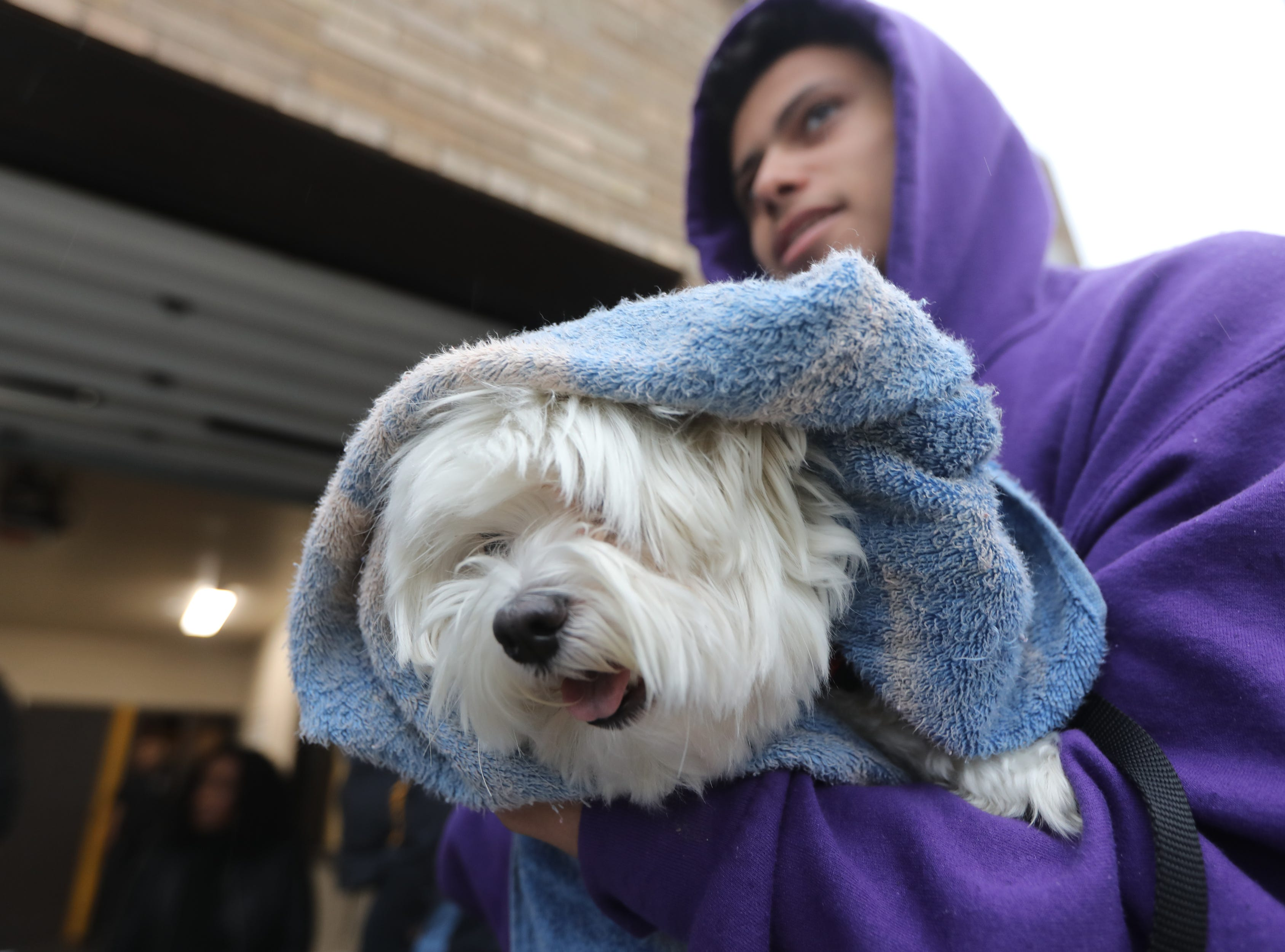 Keno is held by Justin Tanco while on line to get vaccinated. People came out to the Riverside Firehouse in Paterson, Tuesday, May 14, 2019, to get free rabies vaccinations for their cats and dogs.  The 44th annual clinic continues Thursday at 128 Getty Ave. and Friday at 300 McBride Ave. from 7-8pm.  It concludes over the weekend, Saturday from 12:30-1:30pm at Firehouse No.4 on Temple St.  Sunday it is back at Riverhouse Firehouse at East 16th St. and Lafayette from 10:30 until noon.
