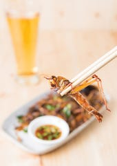 "Insect protein found in grasshoppers and other bugs is counted among a number of alternatives ""expected to entice in the new year."""