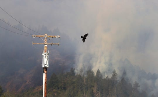 A crow takes flight from a power pole as a fire burns in Oakville, Oct. 16, 2017. Utilities face strict liability for fire damage under state law.