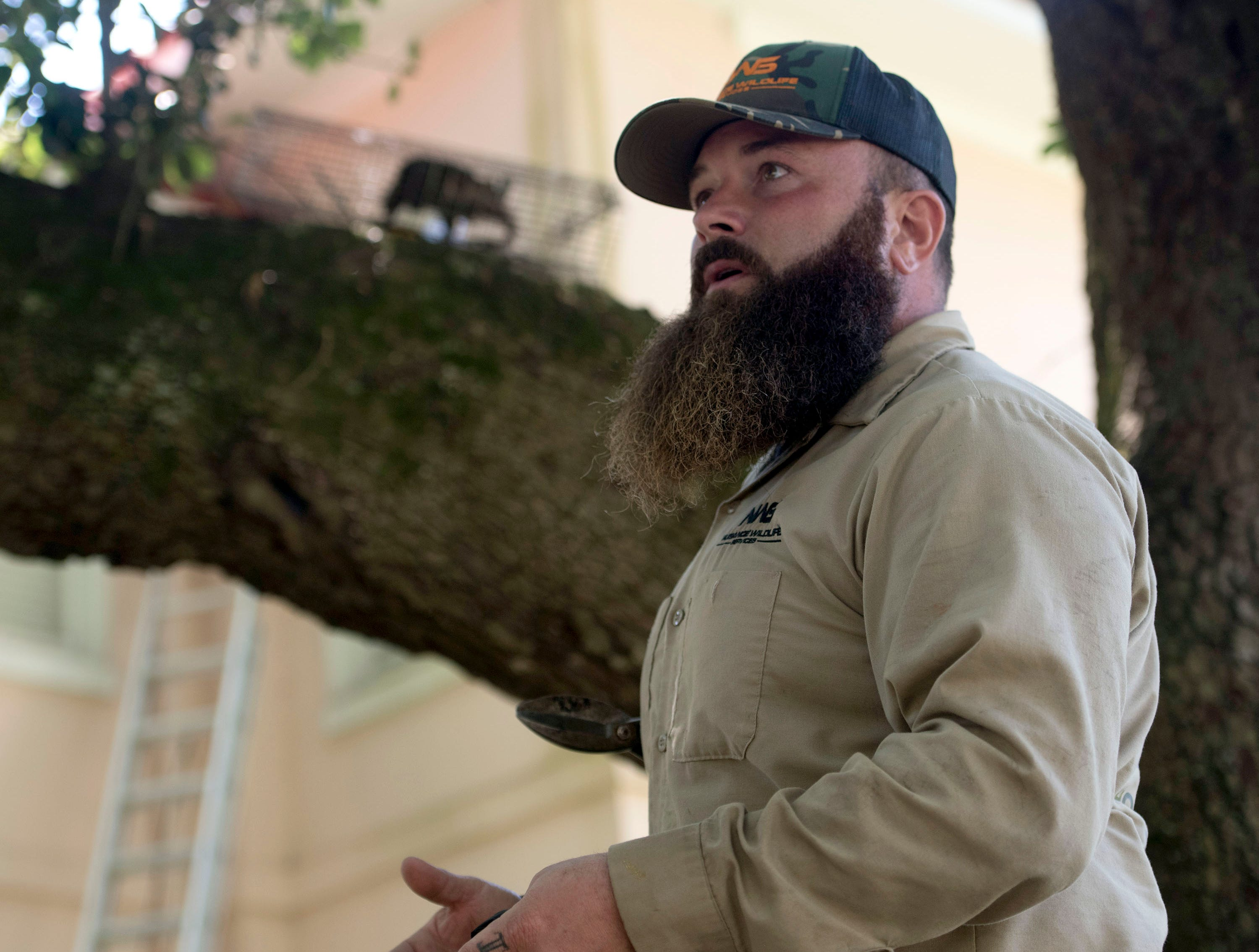 Dustin Niccum, the owner of Nuisance Wildlife Services, describes his Company's mission while on a service call in North Hill on Wednesday, May 15, 2019. Niccum, a Hurricane Michael transplant, launched his humane wildlife removal company in the Pensacola area on April 1.