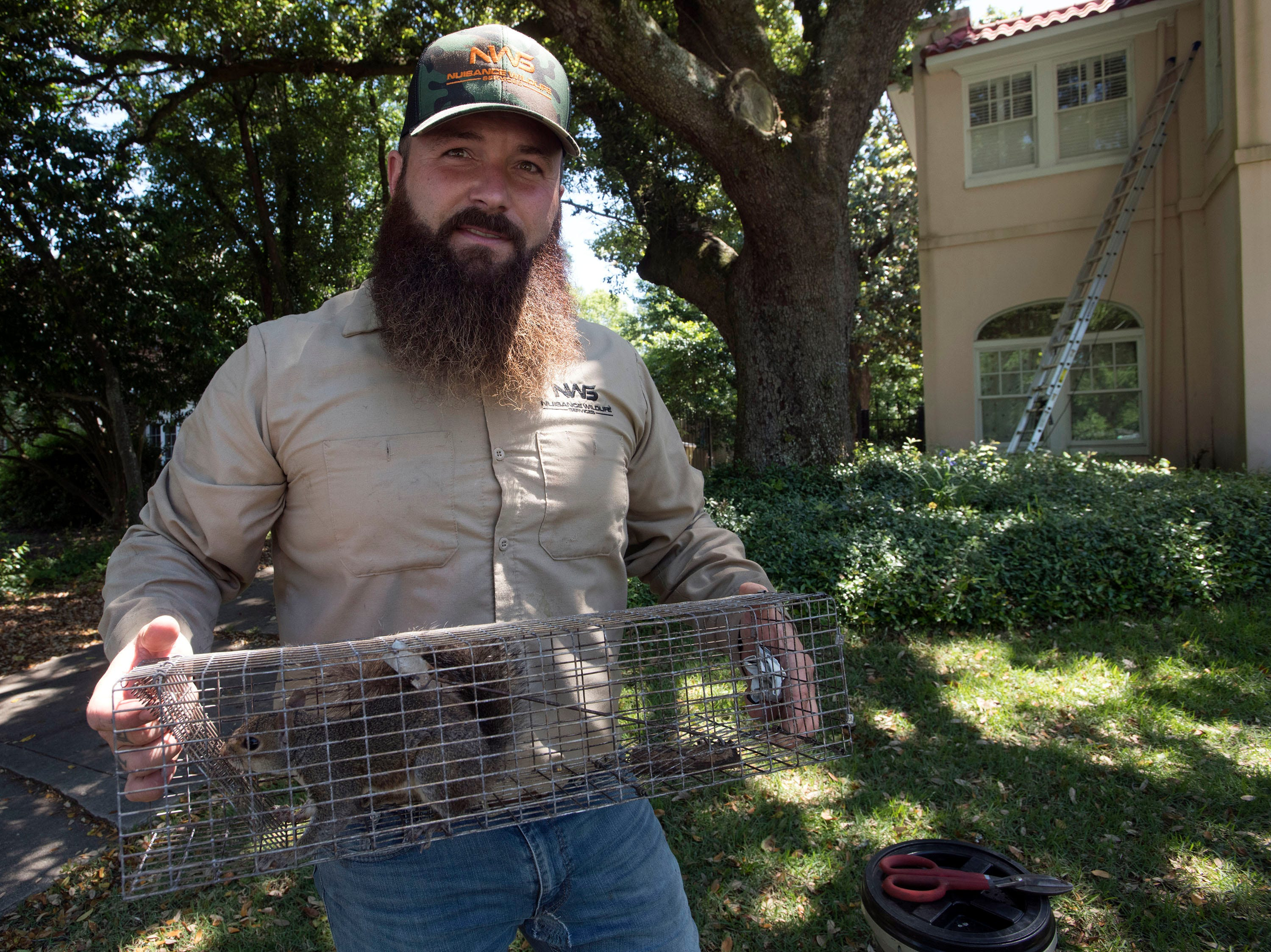 Dustin Niccum, the owner of Nuisance Wildlife Services, shows off a squirrel removed from a homeowner's property in North Hill on Wednesday, May 15, 2019. Niccum, a Hurricane Michael transplant, launched his humane wildlife removal company in the Pensacola area on April 1.