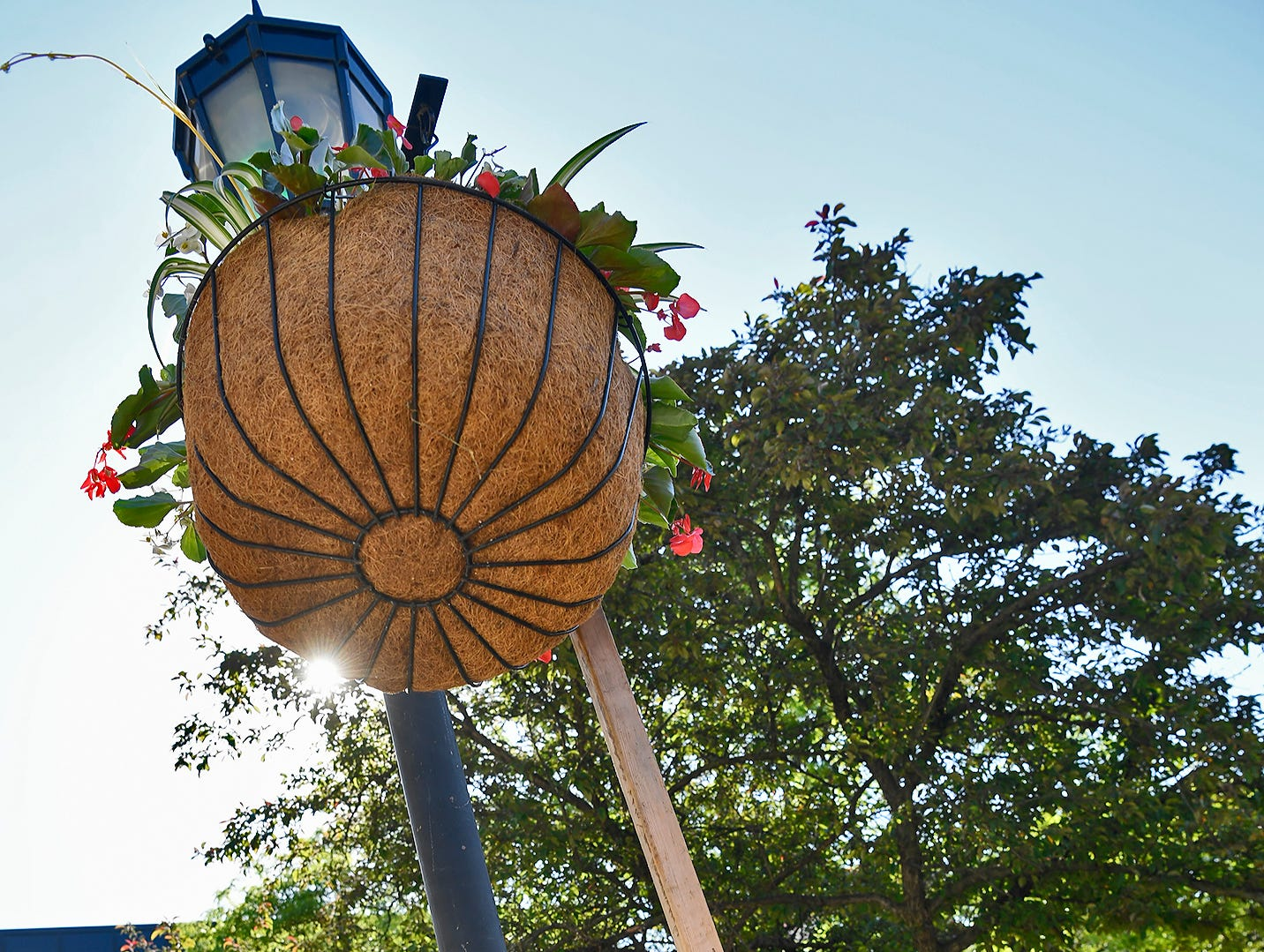 Chip Rodgers hangs one of 210 flowering baskets on Continental Square during the annual Garden Club of York flower planting, Wednesday, May 15, 2019.John A. Pavoncello photo