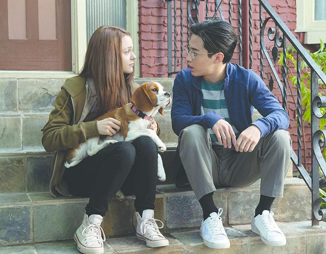"""Kathryn Prescott and Henry Lau star in """"A Dog's Journey."""" The movie is playing at Regal West Manchester, Frank Theatres Queesngate Stadium 13 and R/C Hanover Movies."""