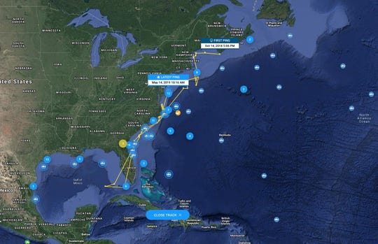 The travels of Cabot, the great white shark, as tracked by OCEARCH.