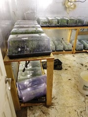 Tulare County deputies found a ton of processed marijuana at a Terra Bella home on Monday, May 13, 2019.