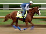 SportsPulse: Courier Journal's Gentry Estes details the horses to watch in the Preakness with Maximum Security and Country House out.