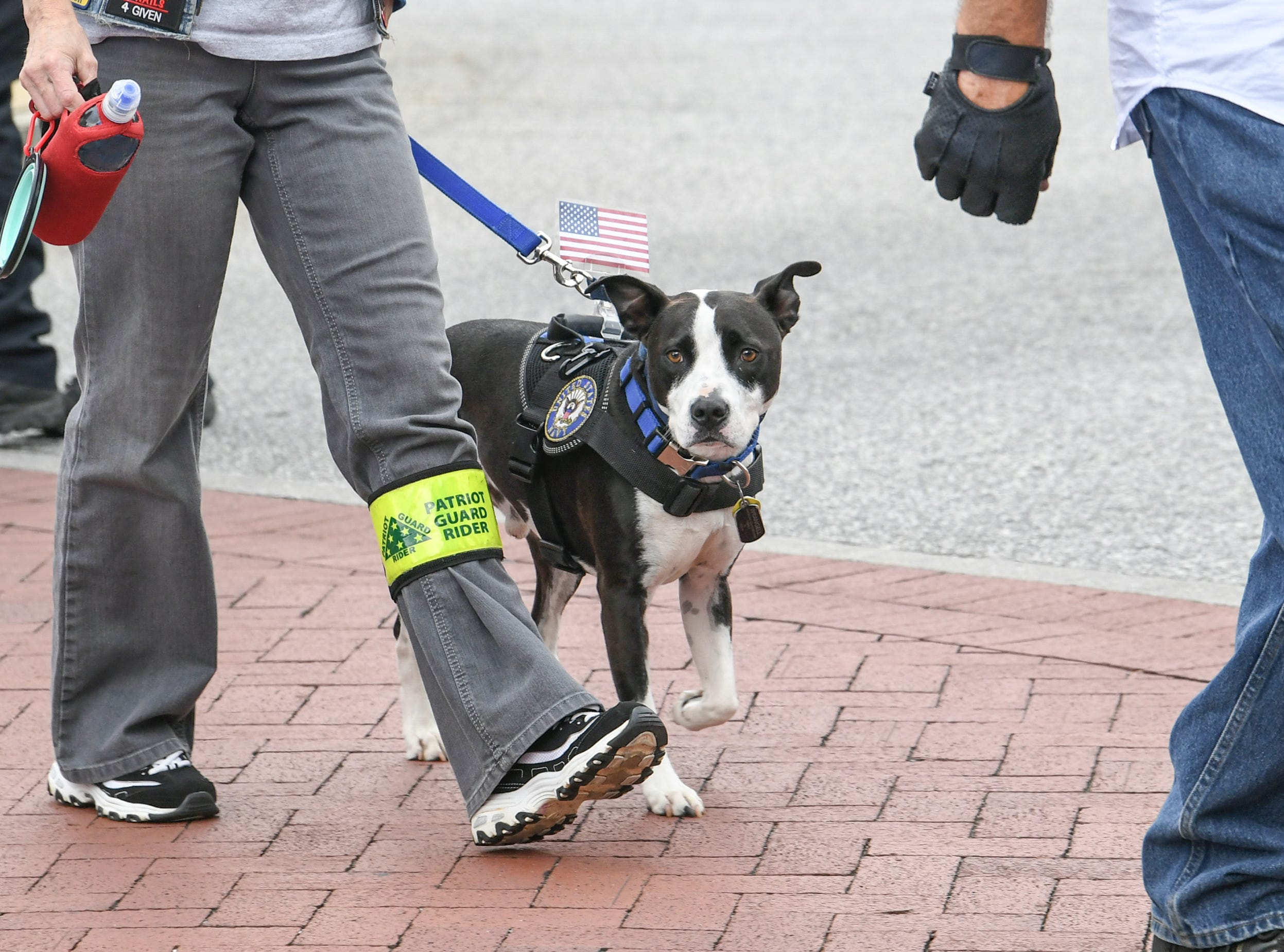 Kim Woods, retired Navy veteran, walks with PTSD dog Wrangell and others with the Patriot Guard to the 2019 Peace Officer Memorial Service Wednesday May 15, 2019, in front of the Anderson County courthouse. People attended to help honor the lives of officers lost in the line of duty.
