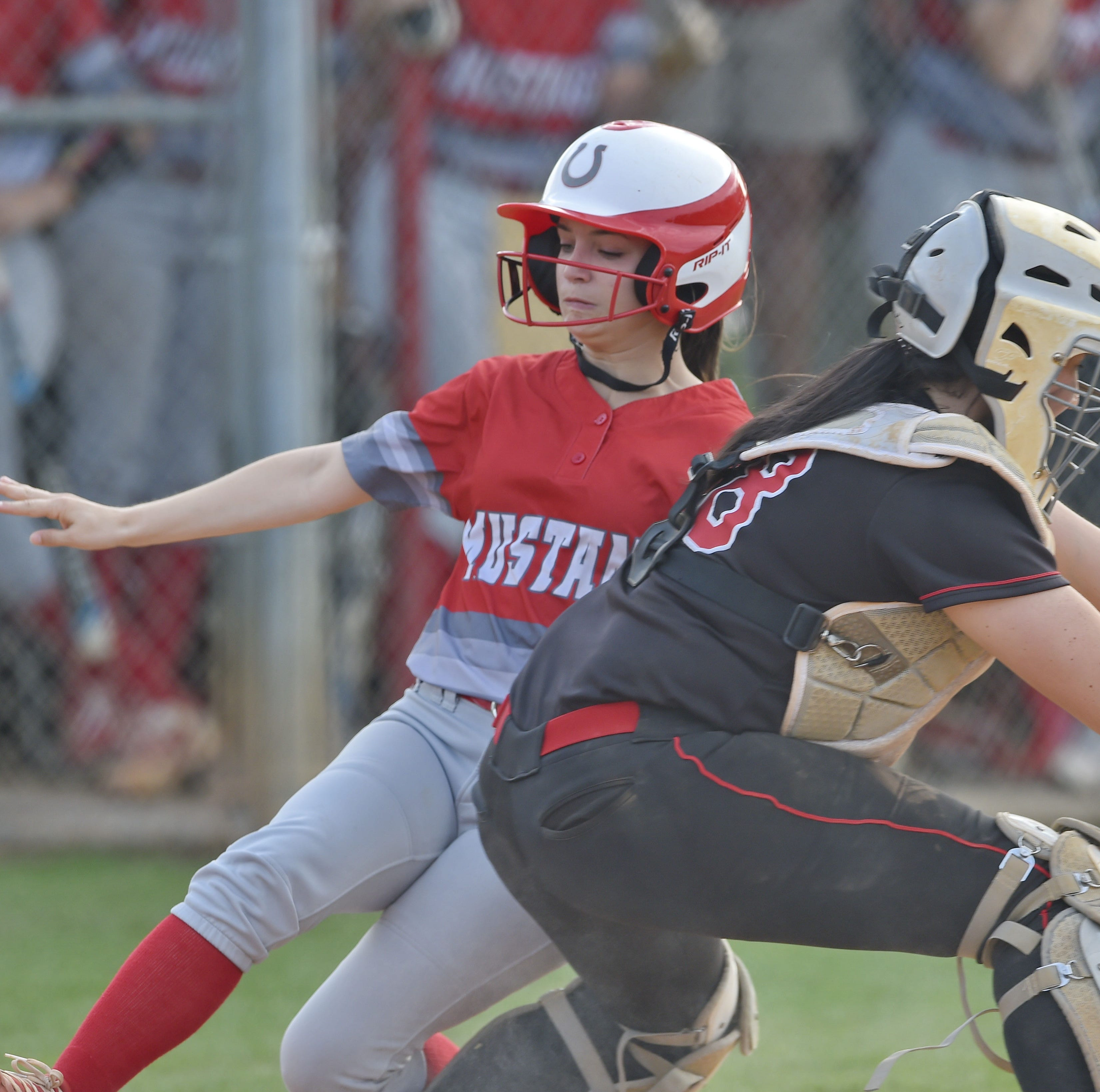 Palmetto falls to Hartsville in AAAA softball championship