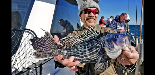 A fisherman with a sea bass landed on the 125-foot Jamaica, May 15, 2019.