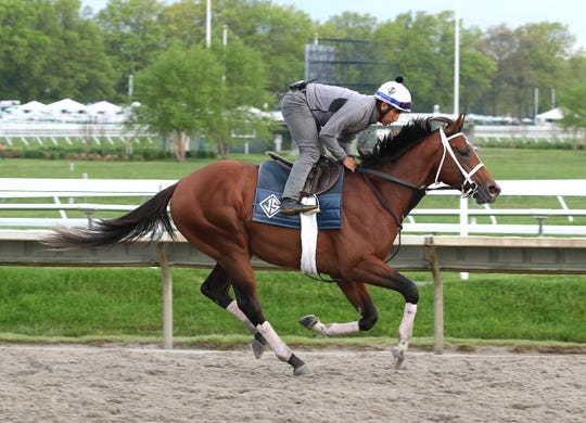 Maximum Security, with exercise rider Edelberto Rivas, gallops a mile on the track at Monmouth Park in Oceanport, New Jersey on Thursday morning May 16, 2019. Maximum Security returned to the track after a week of easy walking.