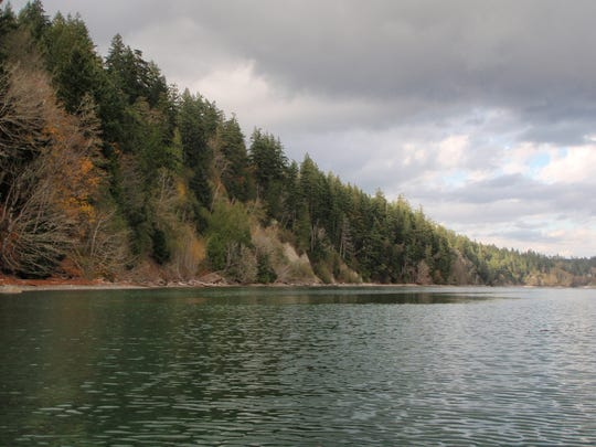 An additional chunk of Dabob Bay has been classified as a natural area, helping area conservation efforts.