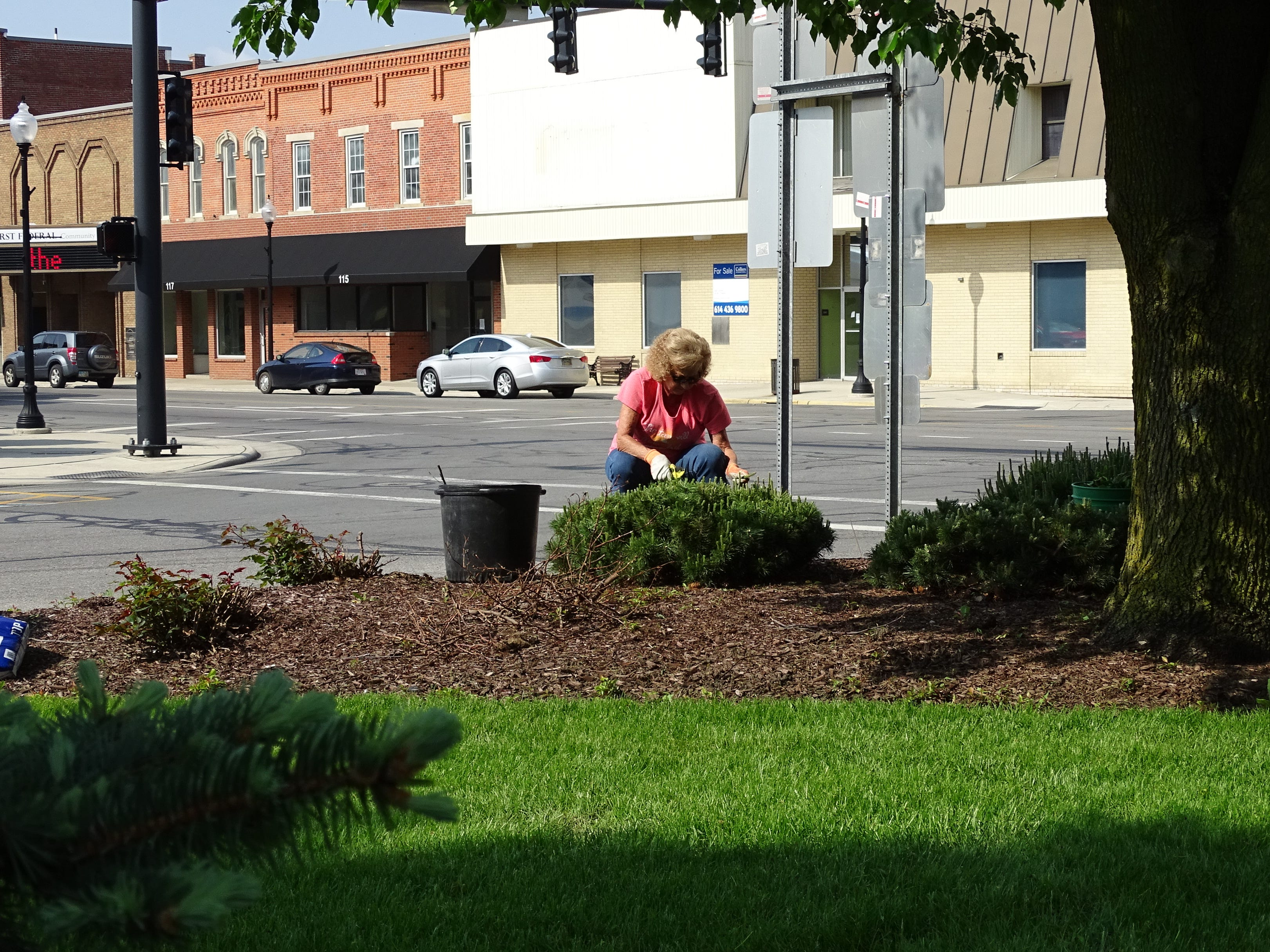 Marylyn Strang, who's a member of both the Earth, Wind and Flowers and Bucyrus Rotary clubs, cleans up the landscaping at Washington Square in downtown Bucyrus on Thursday morning.