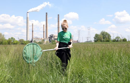 Nashport Elementary School fifth-grader Sarah Jacoby looks for insects during the AEP Conesville Earth Day event Wednesday morning.