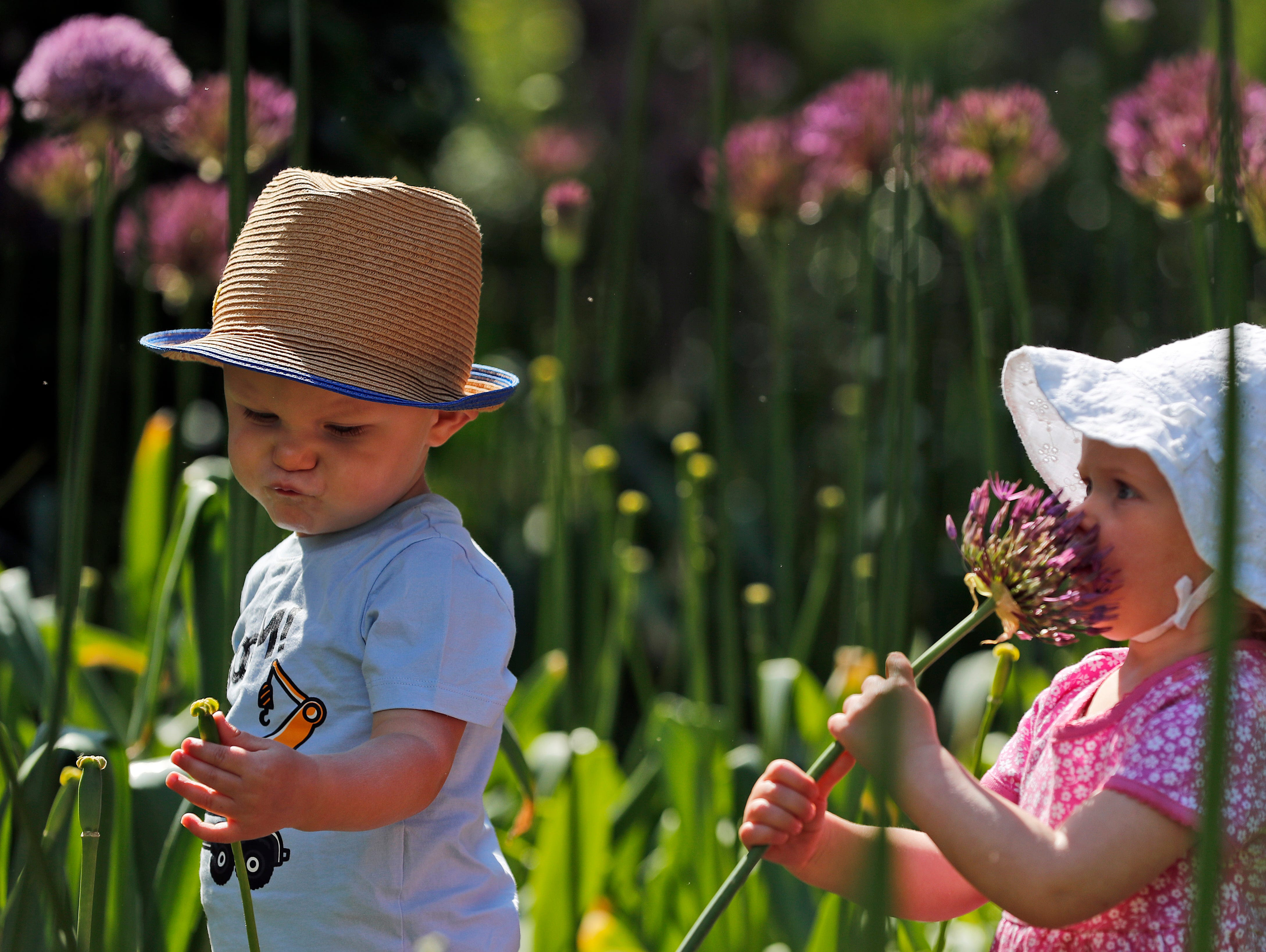 One-year-olds Freddie and Martha, explore the new Children's Garden at Kew, designed around the elements that plants need to grow, at Kew Gardens in London, Thursday, May 16, 2019. The new garden covers the equivalent of nearly 40 tennis courts, and is for youngsters to explore and play in.