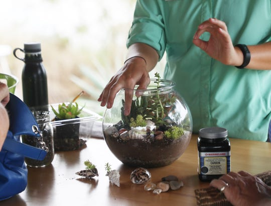 How to build a terrarium is on one of the new programs offered at The Naples Botanical Garden.