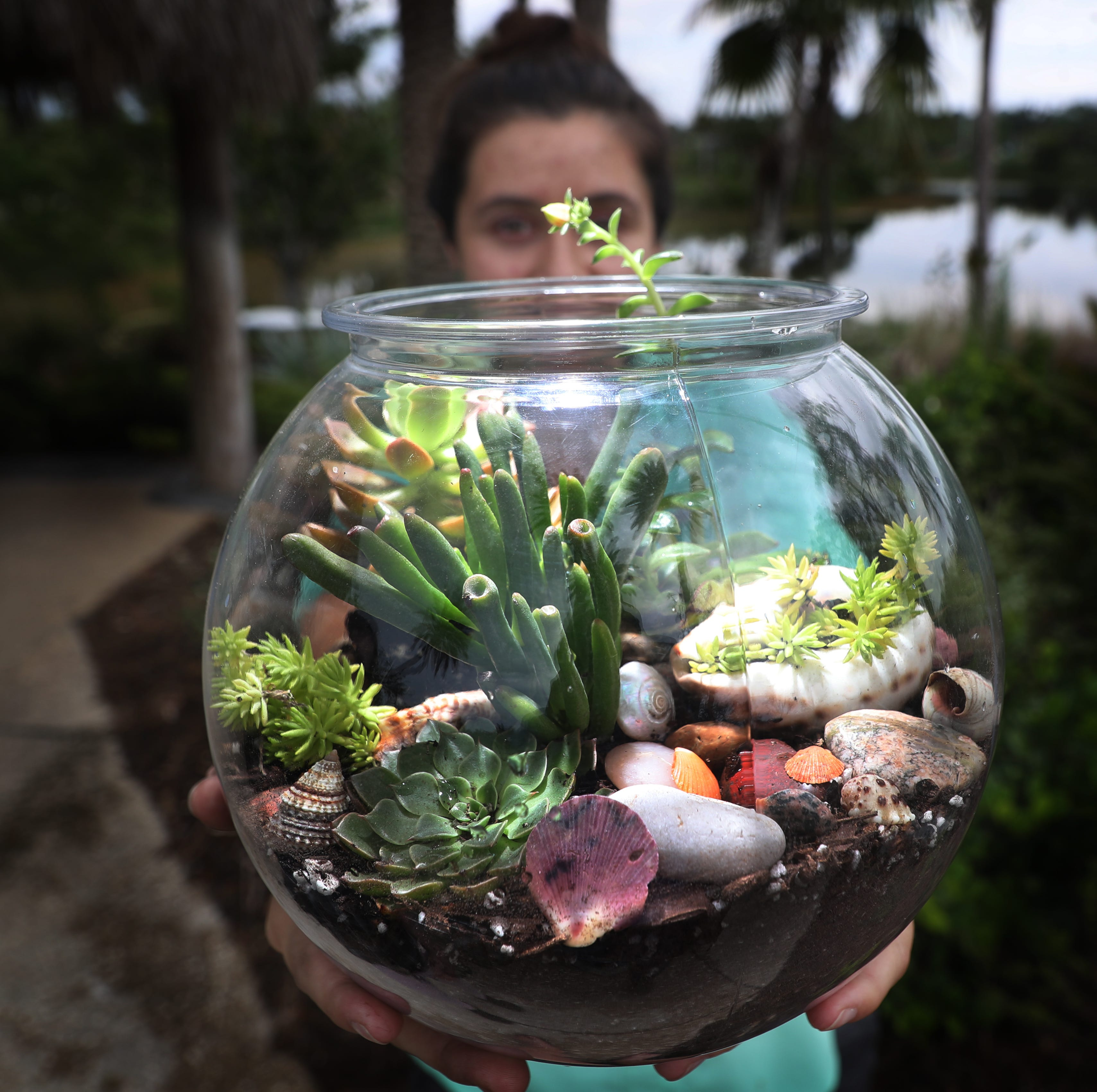 Learn how to make a terrarium, more at Naples Botanical Garden