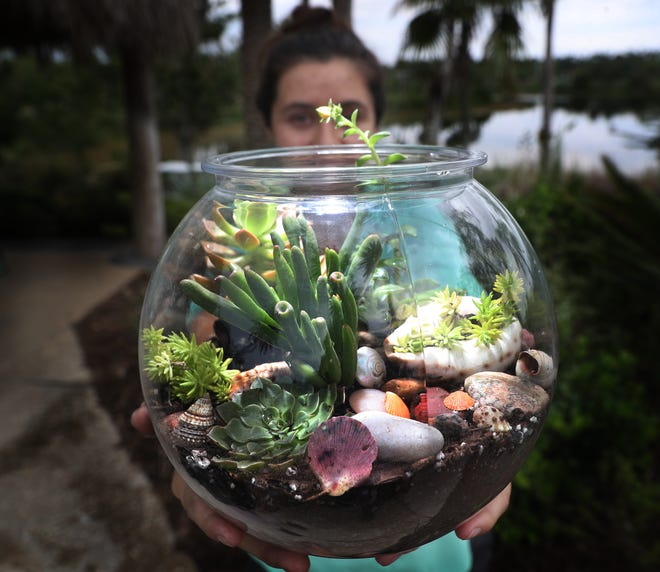 Donnamarie Richmond, an education programs assistant at Naples Botanical Garden in Naples displays a terrarium she made as part of a new interactive program at the gardens. It is one of several programs offered at the gardens.