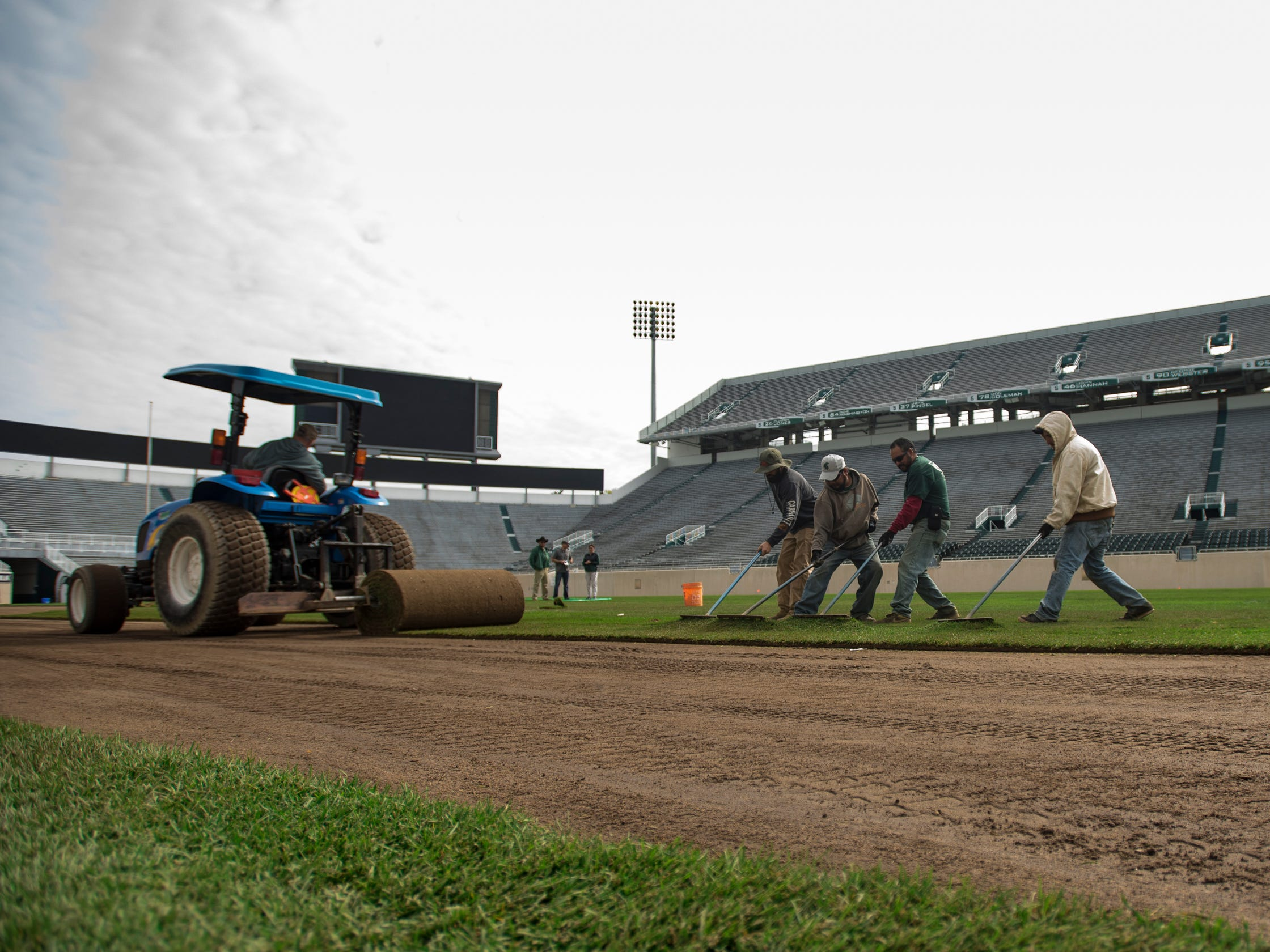 The Kentucky bluegrass that's been installed at MSU's Spartan Stadium is the same kind of grass used by the NFL's Super Bowl champion New England Patriots.