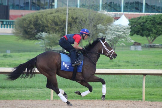 Warrior's Charge is owned by a group of Memphians and had 12-1 odds to win this year's Preakness Stakes as of Thursday.
