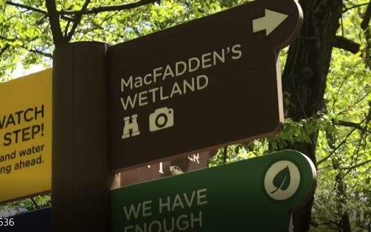 This sign at Flat Rock Brook Nature Center, pointing to Macfadden's Wetland -- formerly Macfadden's Pond -- is one of the few remaining traces of Macfadden in Englewood