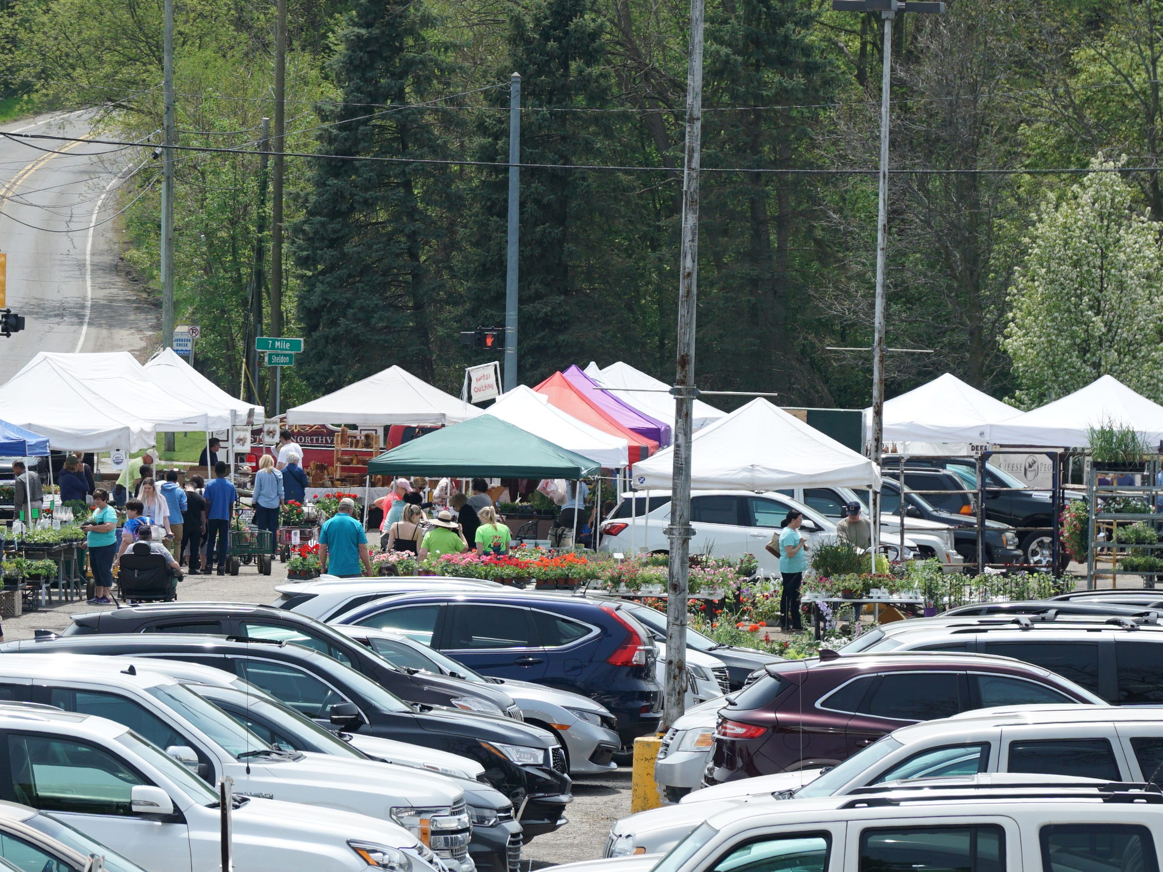 The Northville Farmers Market underway on May 16, 2019. The Chamber of Commerce-sponsored event takes place every Thursday from 8 am-3 pm through October. Shoppers can find the market at the southwest corner of Center and Seven Mile in Northville.