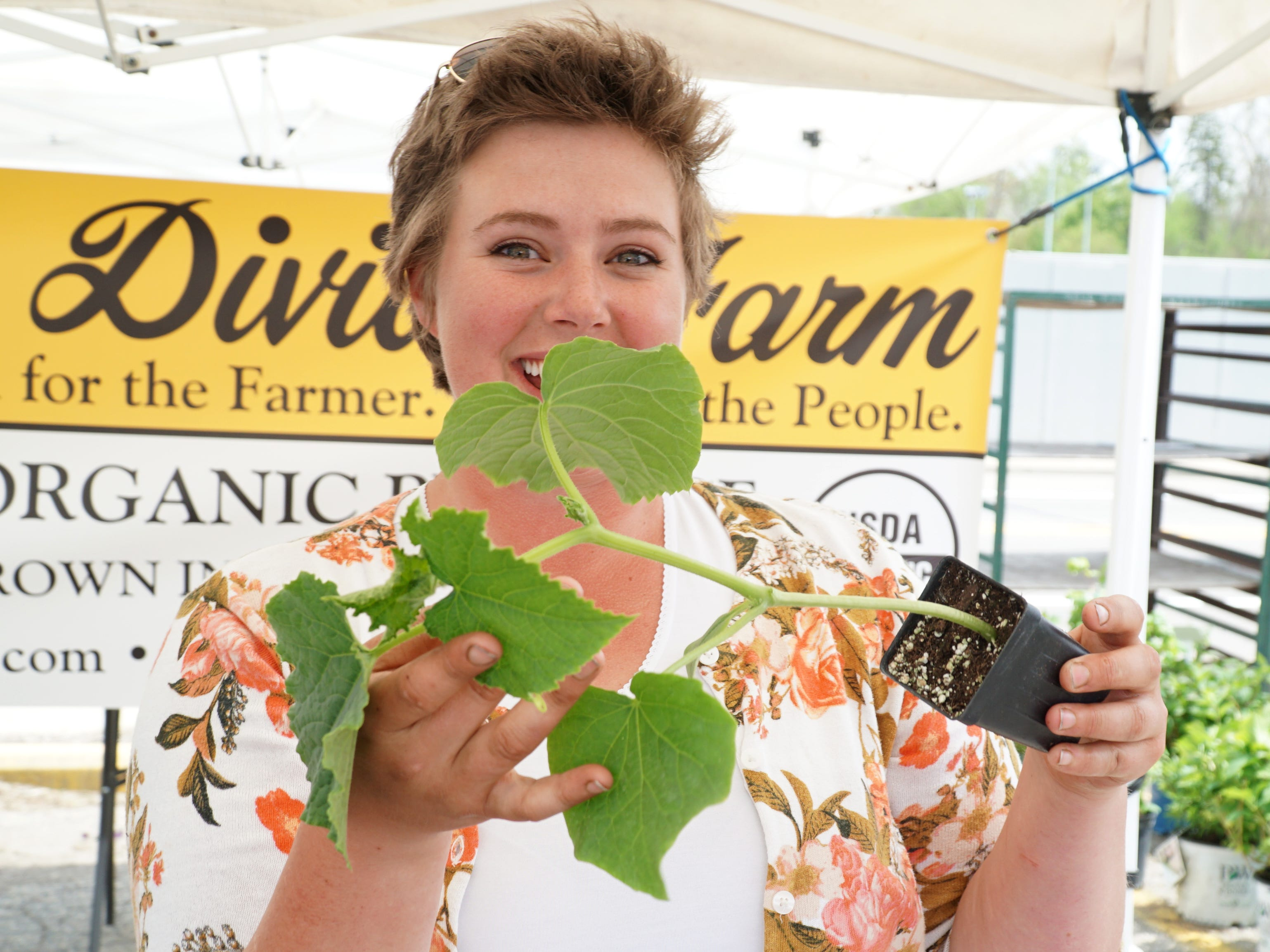 Lizz Wysocki of Stockbridge's Lake Divide Farm displays some of the organically-grown cucumber plants she's selling at the May 16 farmers market.
