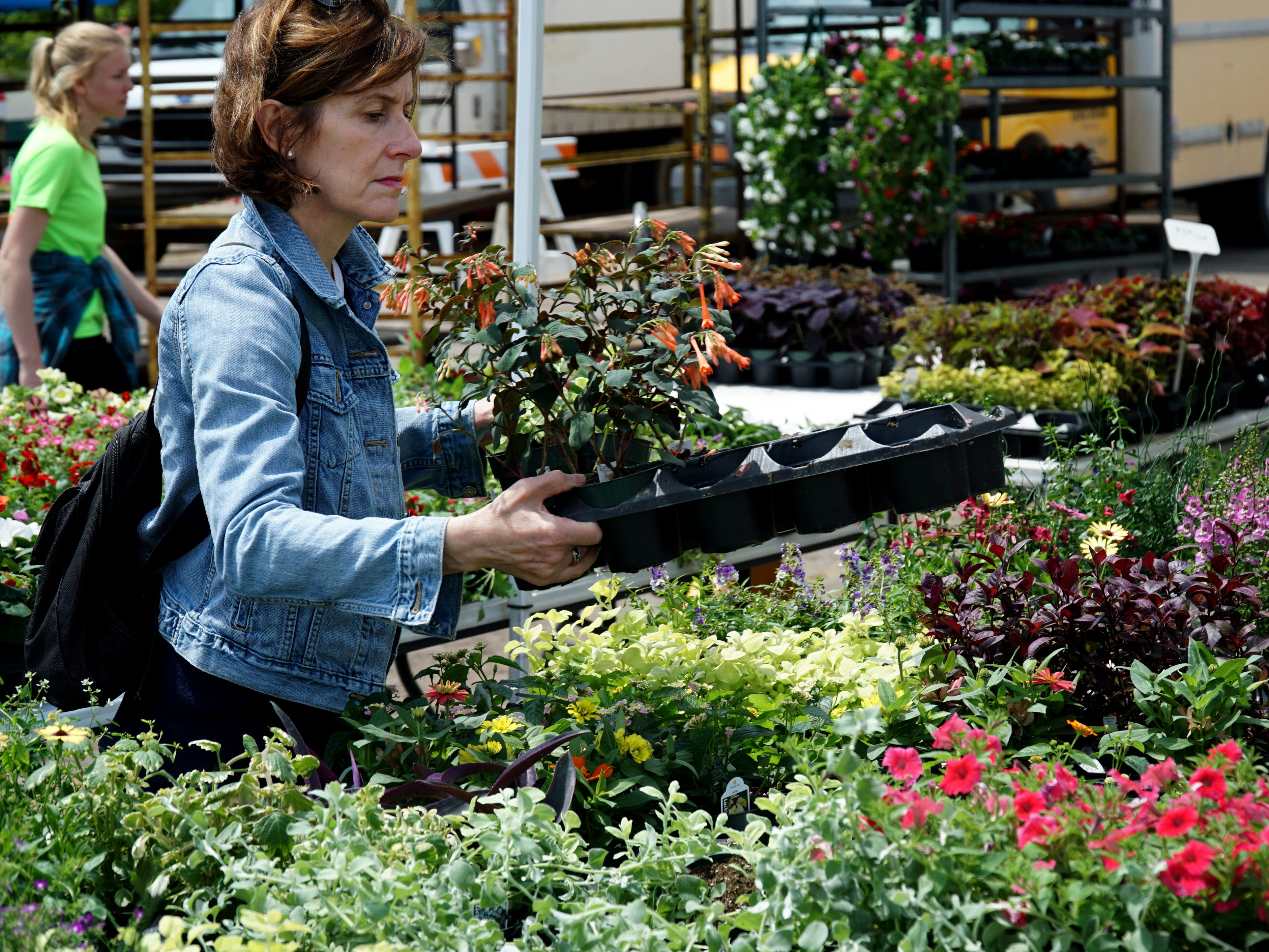 Tamara Wood selects some annuals from Prielipp Farms at the May 16 Northville Farmers Market.