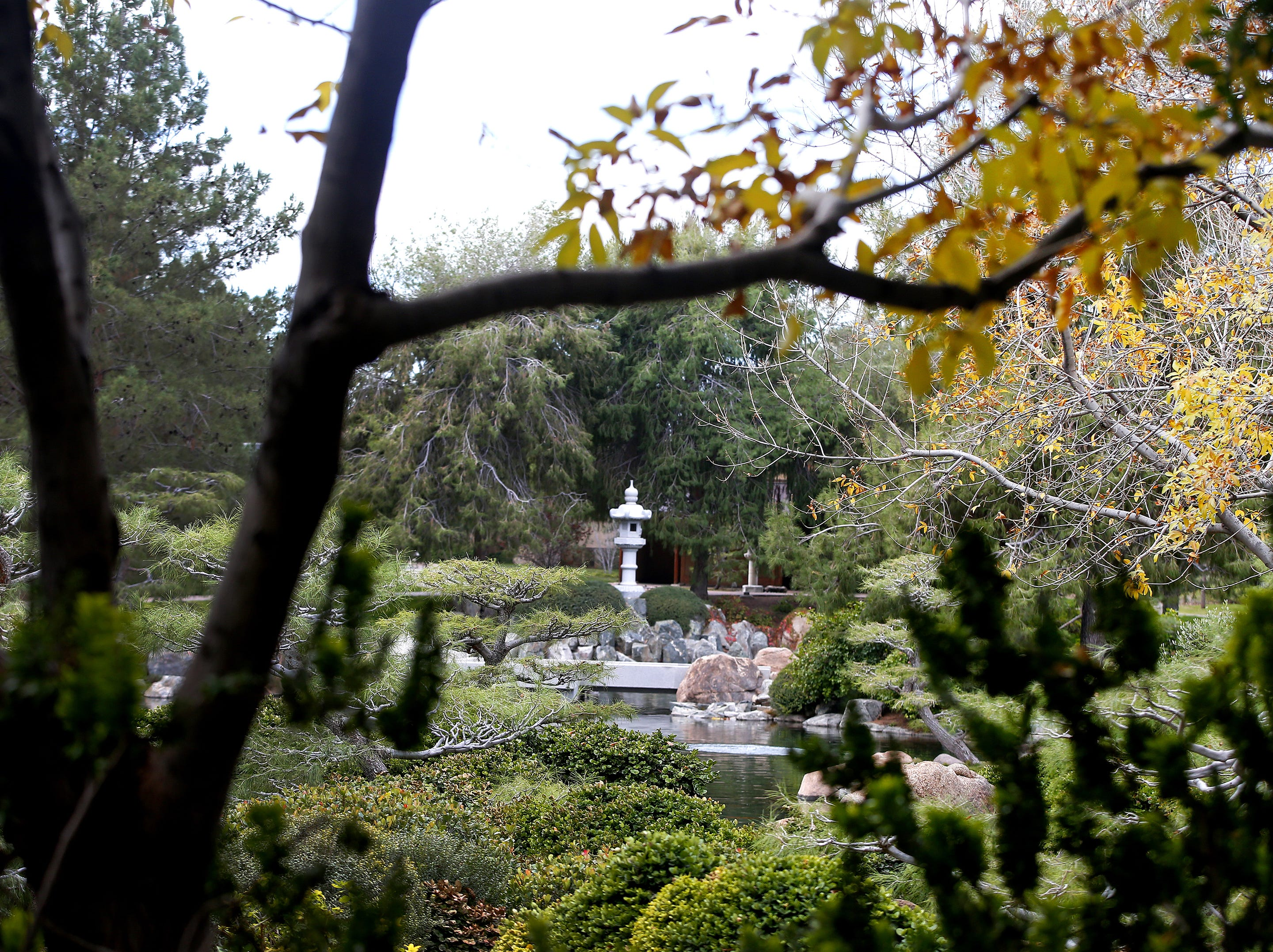VISIT THE JAPANESE FRIENDSHIP GARDEN: The Japanese Friendship Garden in downtown Phoenix provides a lush garden with zigzagging paths for a moment of quiet in a busy city.