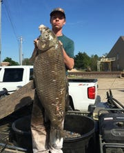 Joshua Lee shows the record  76-pound black buffalo fish he took while bowfishing.