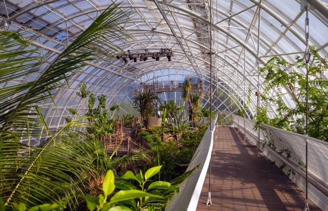 Photograph the plants inside the Crystal Bridge Conservatory before it closes for a two-year renovation.  [Chris Landsberger/The Oklahoman Archives]