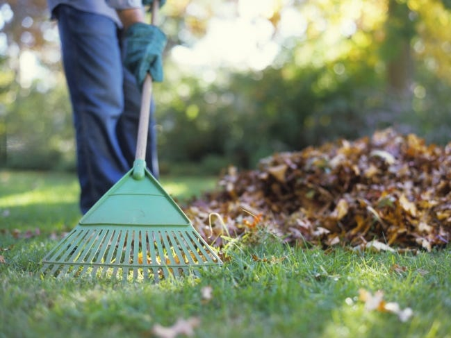 As leaves begin to fall, gather and shred or mow them so you can recycle them rather than send them to the landfill. Add to compost, use as mulch or till into garden plots. [Metro Creative Connection]