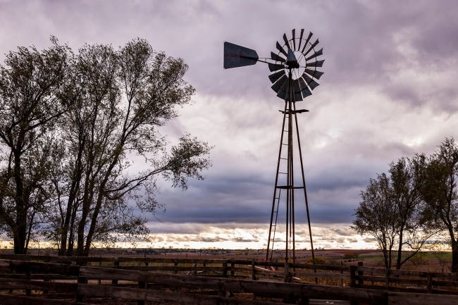 Scene from an Oklahoma farm. [PHOTO PROVIDED BY OSU EXTENSION]