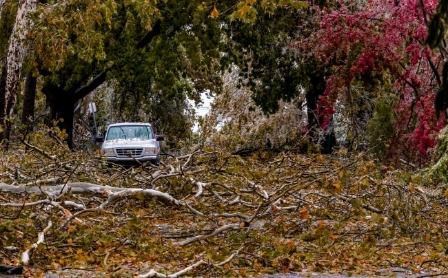 Broken tree limbs litter the ground Tuesday and cover NW 14 in Oklahoma City after an autumn ice storm. [Chris Landsberger/The Oklahoman]