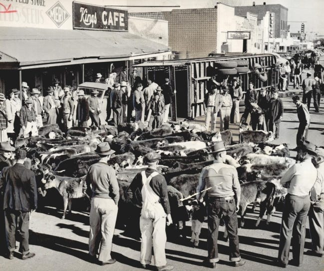 More than 100 calves made the intersection of W Britton Road and N Western Avenue a cattle lot after a double-decked cattle truck overturned in December 1947 in the old town of Britton. The accident drew a crowd of onlookers, as well, who became a human corral for the four-legged displaced passengers spread out along the area's main street. This photo was published on Page 1 of The Daily Oklahoman. Britton was annexed into Oklahoma City in 1950. [AL MCLAUGHLIN/THE OKLAHOMAN ARCHIVES]