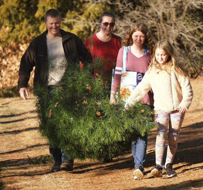 The Hagemeier family carries the tree they selected and cut down at Sorghum Mill Christmas Tree Farm on Friday. From left are Jeremiah, Dierdre, Ariana, 13 and Elaina, 10. Not shown is James, 11. [Doug Hoke/The Oklahoman]