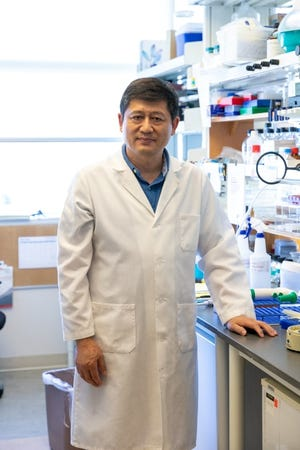 OMRF scientist Dr. Lijun Xia