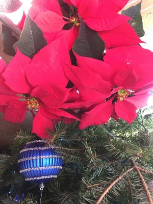The poinsettia, a traditional holiday plant, is native to Mexico. [PHOTO PROVIDED]