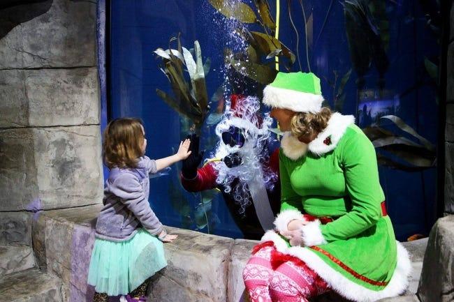 Scuba-diving Santa at the aquarium in Jenks. [Provided]