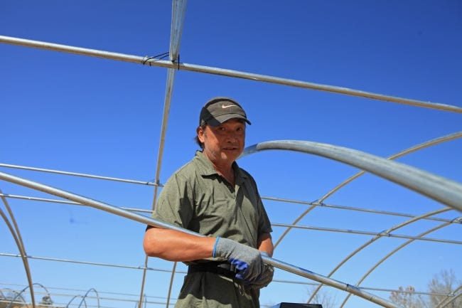 Richard Yue, one of the workers in Bryan Peng's New Mexico workforce, setting up greenhouses at the Big Buddha Farms in Oklahoma. [Wufei Yu / Searchlight New Mexico]