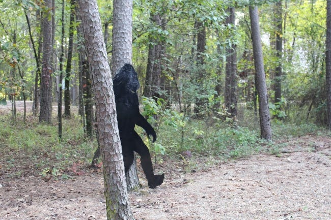 An Oklahoma lawmaker has filed a bill to establish a Bigfoot hunting season. This photo of a metal cutout of Bigfoot was taken at a cabin in Hochatown, where Bigfoot items are a popular seller by merchants. [LINDA LYNN, THE OKLAHOMAN]