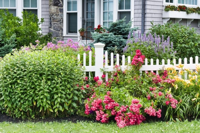 Looking to get your yard in order? A Beginner Garden Design workshop at the Myriad Botanical Gardens could be the place to start. [Photo provided]