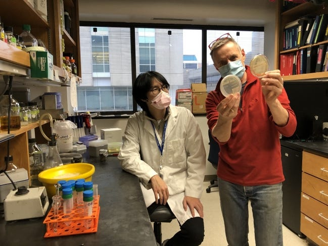 Oklahoma School of Science and Mathematics student Kevin Nguyen, left, is getting hands-on experience studying a gene linked to cancer and birth defects under the mentorship of Oklahoma Medical Research Foundation scientist Dean Dawson. [OMRF]