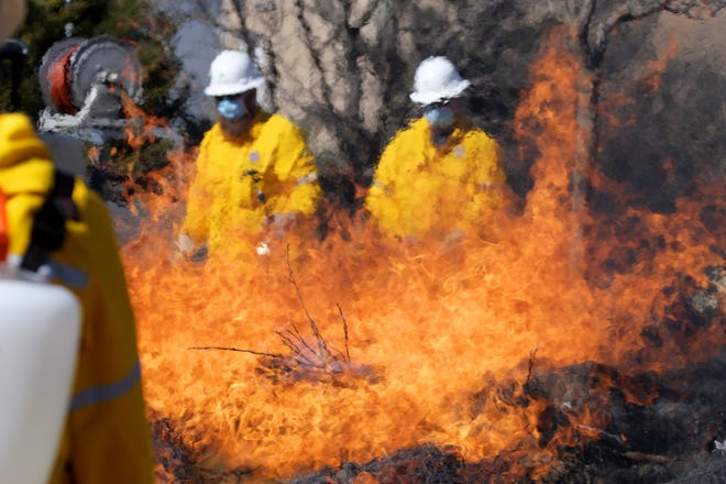 ABOVE AND BELOW: Firefighters keep an eye on a prescribed burn near the Land Run Monument along the Bricktown Canal in Oklahoma City on Wednesday. The burn was conducted by the Oklahoma City Fire Department, Parks Department and Oklahoma Forestry Services staff. [Doug Hoke photos/The Oklahoman]
